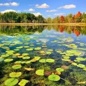 河北省委省政府第二轮生态环境保护督