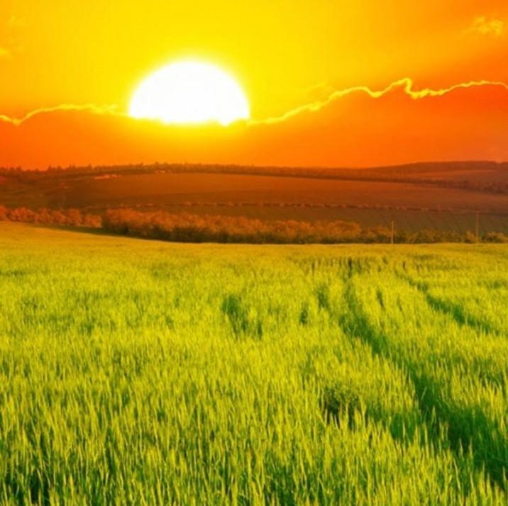 黄河上游三省签订水源涵养区生态环境保