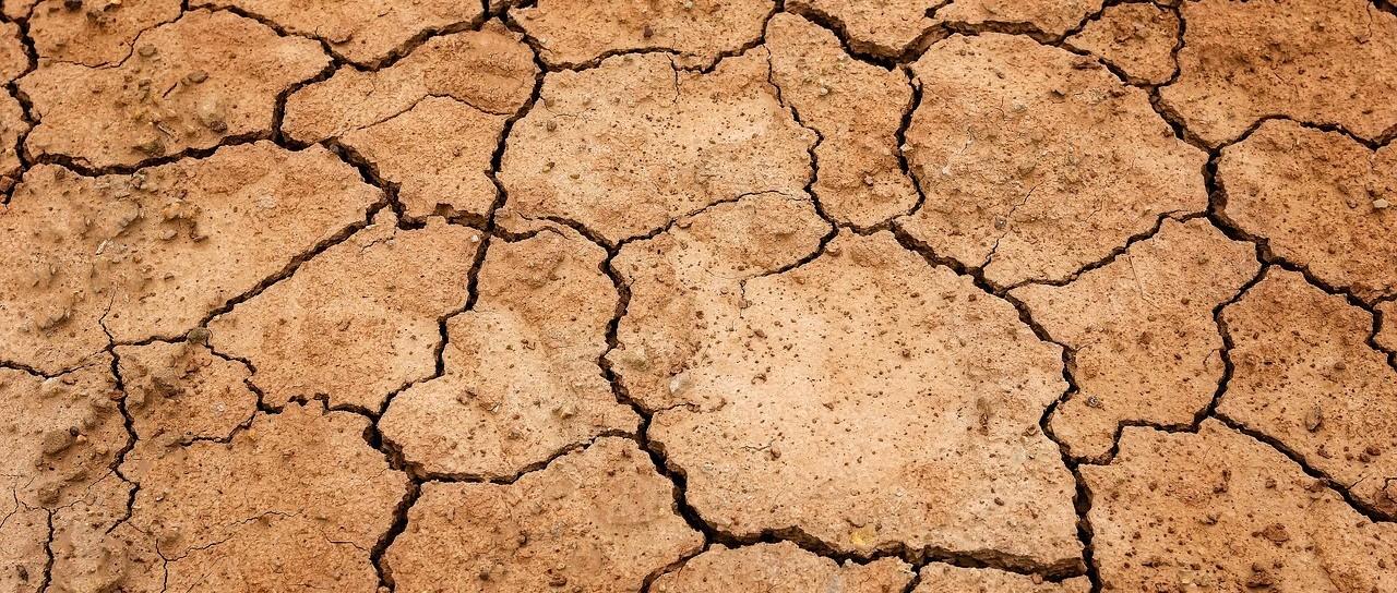 大家敏感大气污染,实际上土壤污染非常严重