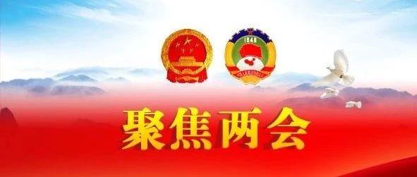 程立峰:长江保护法被列为今年立法任务,力争按期完成