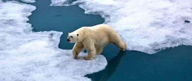 """研究称:气候变化""""临界点""""或将比预期更早出现"""