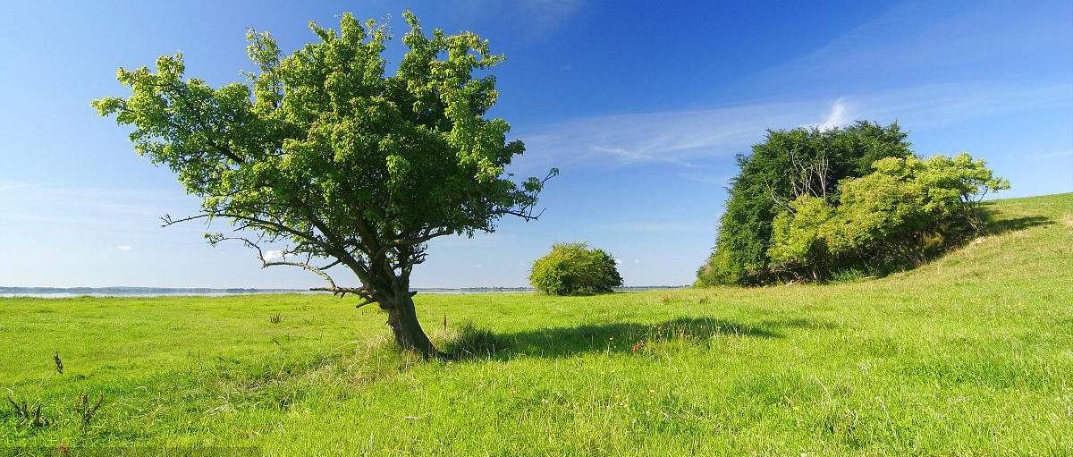 环保行业:国资入驻带来融资利好,商业模式风险不容忽