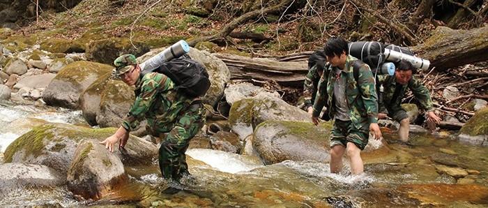 最美林业故事:数字林业 璀璨人生