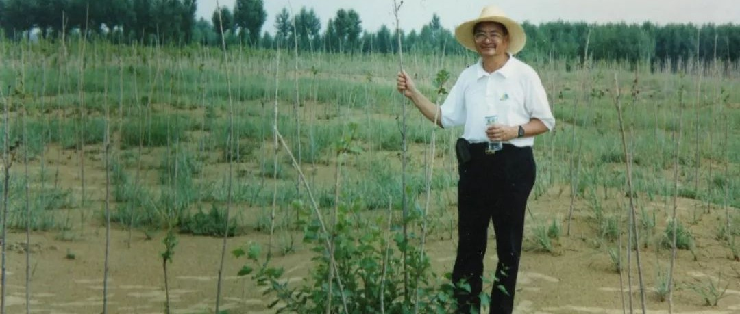 循着梁先生的文字,重温在恩格贝沙漠植树的时光