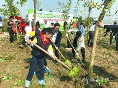 今年佛山市力争完成新增造林绿化超2万