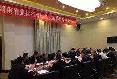 河南省焦化行业绿色发展协会正式成立