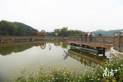 做好生态文章!梅州梅县水车镇依托资