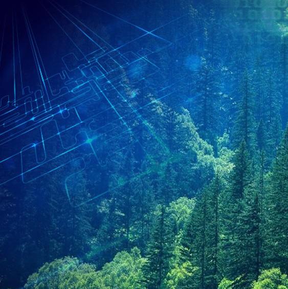 国家林草局派出机构加强野生动物疫源疫病监测防控