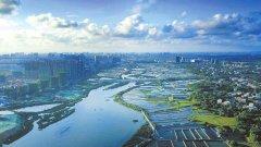南方时论:坚持以生态优先绿色发展为导向