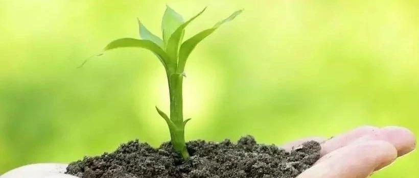 关于推动土壤保护与治理产业化市场化的建议
