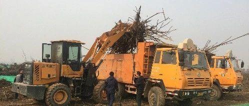 垃圾分类项目案例:西安沣东拆迁清表垃圾无害化处理项