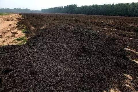 土壤修复行业:蛋糕大,但吃起来很难!