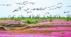 完善鄱阳湖流域综合治理制度体系