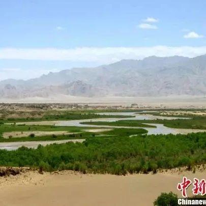 """戈壁滩变""""绿洲"""":中国""""盐湖""""城10余万亩国土将绿化"""