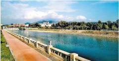 深圳宝安:提升全民环保意识 共建岸绿