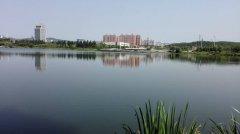双鸭山市秸秆综合利用暨有效解决秸秆