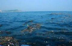 民众环保_海洋微塑料污染防治该从何处入手?-国际环保在线