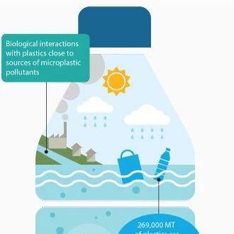 海洋塑料污染耗资达万亿美元:威胁人