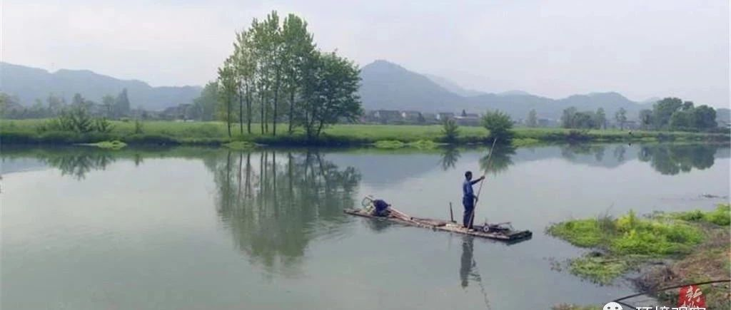 益阳桃江:当地政府组织清理沾溪河垃
