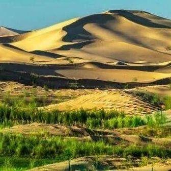 王文彪:三十年,创造沙漠变绿洲奇迹