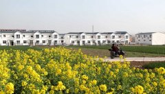 河南已完成沿黄生态廊道建设120公里