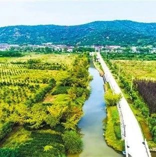 2021长江中游城市群双碳峰会和湖南国际绿色发展博览会