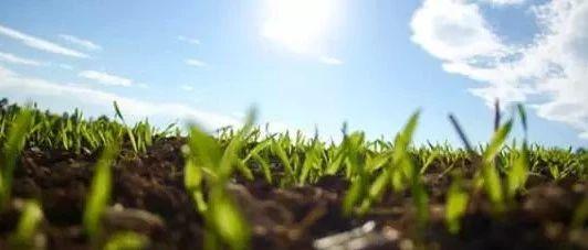 多元土壤修复技术路径 剑指我国土壤污染现状