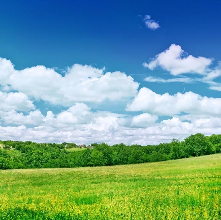 江西生态扶贫增强林农获得感