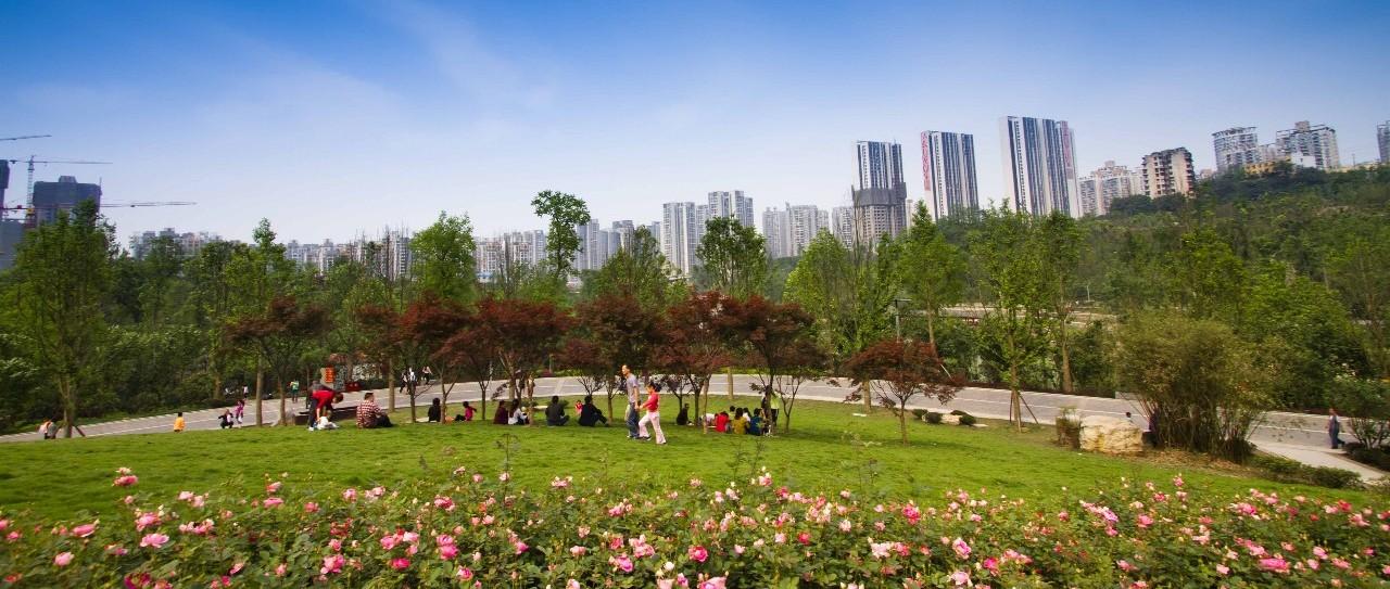 刘柏音:长江生态环境保护修复智慧决策