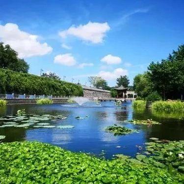 晋城地表水环境质量改善排名出炉,高