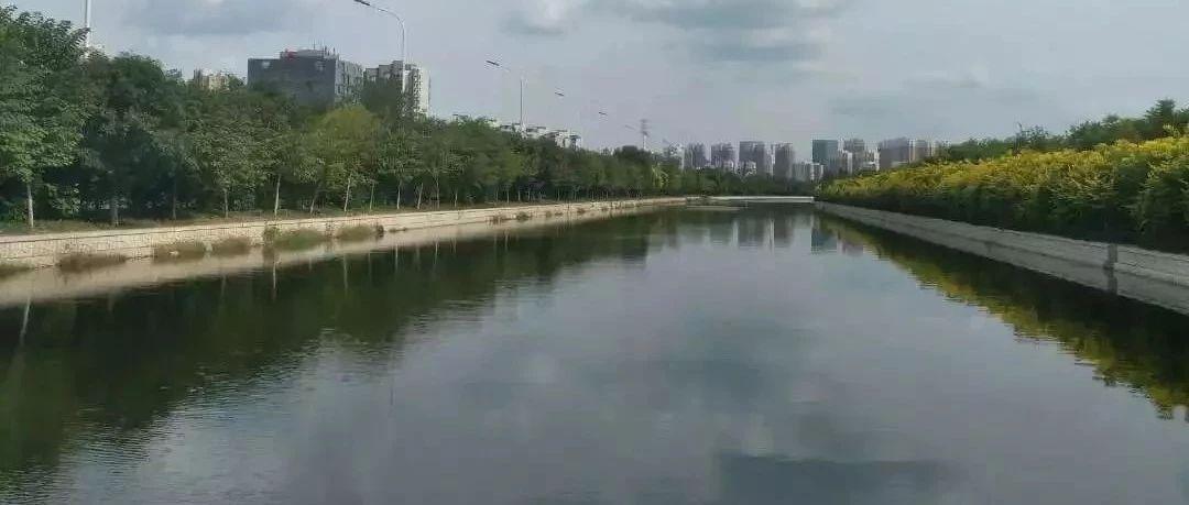应查尽查,入河排污口调查管理立足河