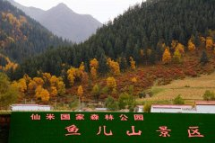 青海省两座森林公园入选国家重点建设