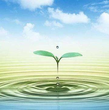 哈尔滨市松花江饮用水水源保护条例征