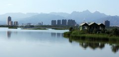 石嘴山市加快推进盐碱地生态治理和高