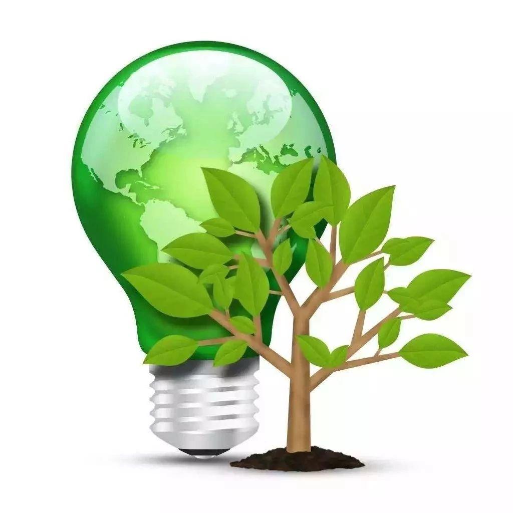 陈雨露:有针对性地解决绿色投融资中