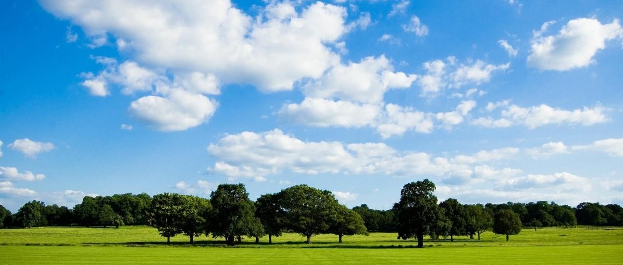 再现蓝天白云,城区空气优良率达90%