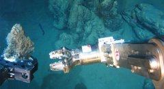 深海采矿破坏海底生态 科学家忧抗生素新药研发受阻