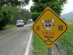 保护台湾石虎 路杀预警设备台3线正式