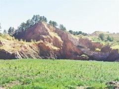 违法排污违规倾倒毁坏林地侵占湿地 一批突出生态环境