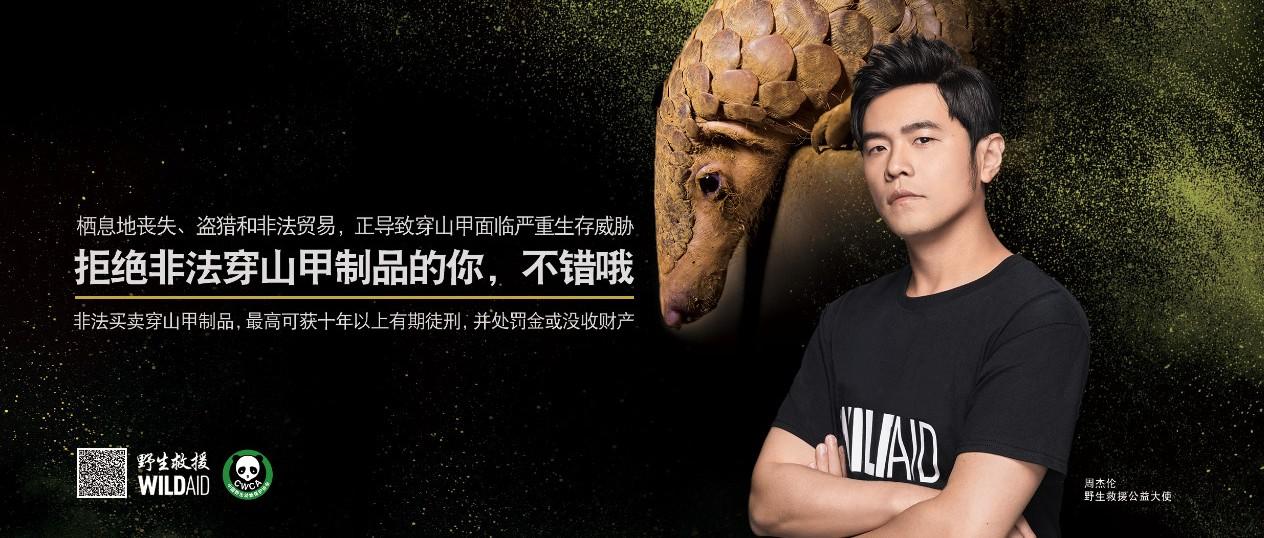 周杰伦保护濒危野生动物公益广告媒体发