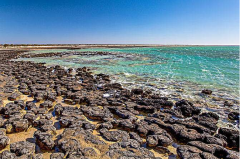 我国各级各类海洋自然保护地达271处