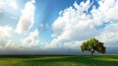 平顶山市协同控制攻坚夏季臭氧与PM2.5