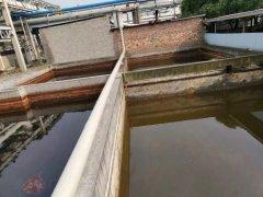 河面现油污 监管成摆设――嘉兴市秀洲