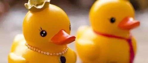 环保组织报告:塑胶玩具增塑剂超标,
