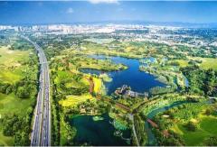 城市绿色发展之路如何走?企业家们有这些建议