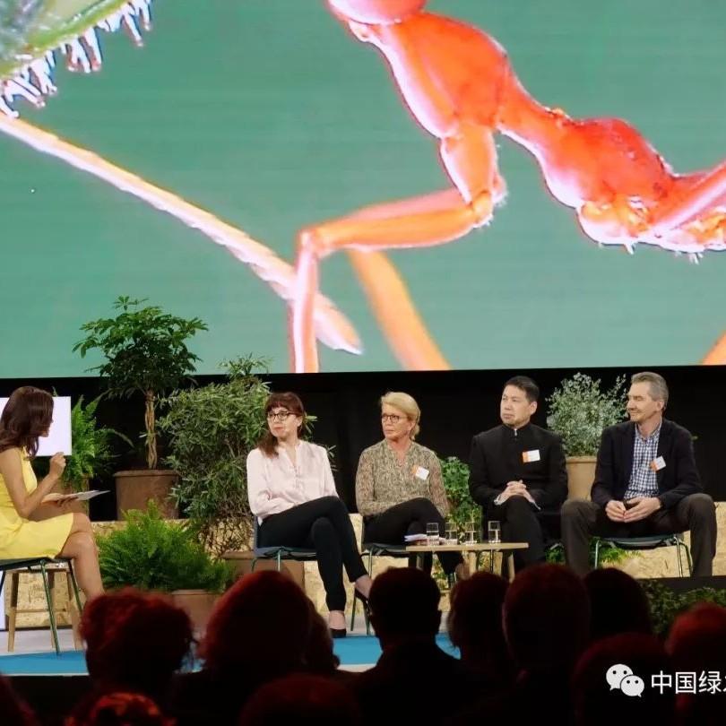 周晋峰:非政府组织如何应对气候变化