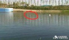 """河南郑州:贾鲁河电鱼人被""""电""""身亡,专家细说电鱼危"""