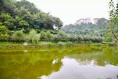 重庆市渝北区区长谭庆检查盘溪河、新华水库水体整治情况