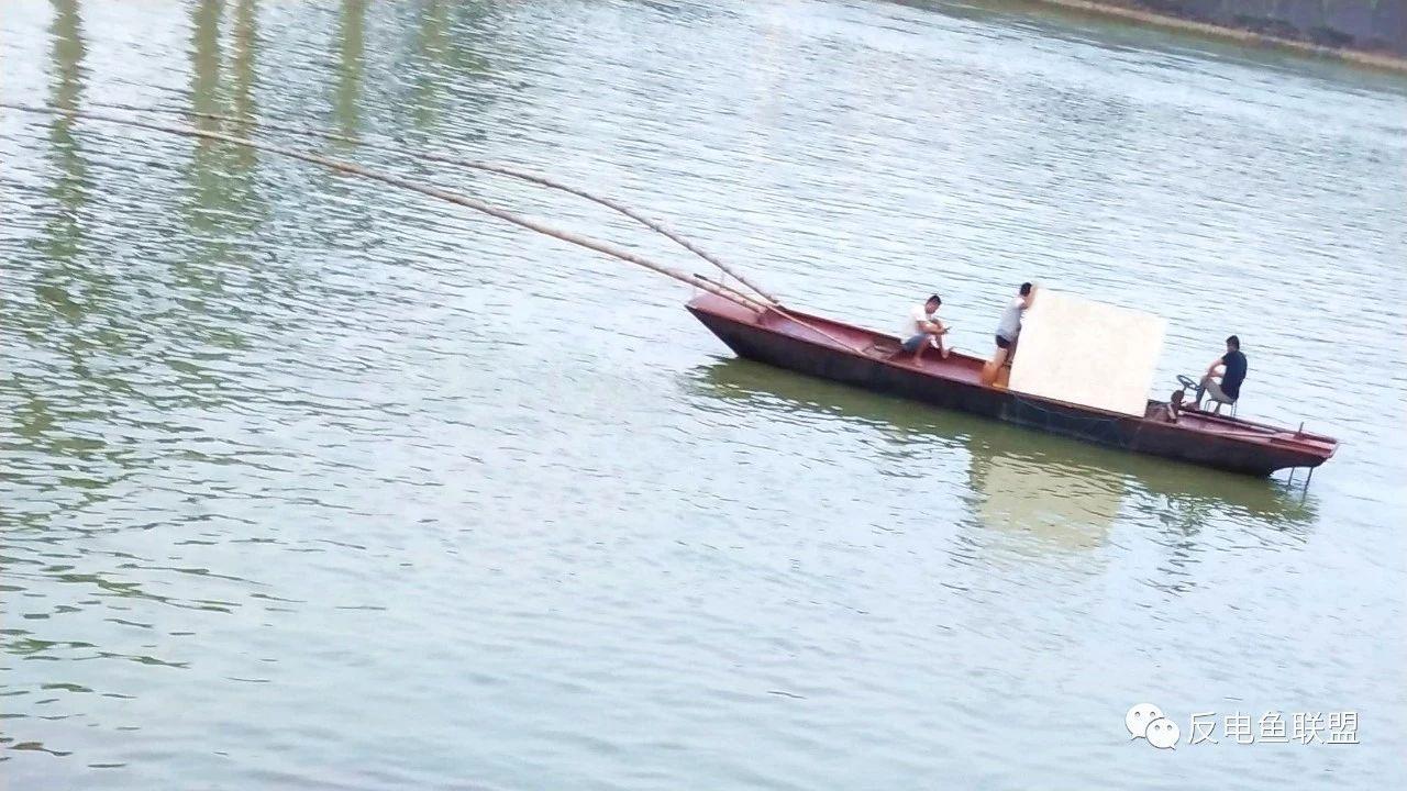 广西百色:电鱼船成群结队横行右