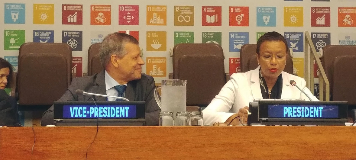 可持续发展论坛:抓住前所未有的机遇